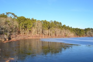 Little Cliff pond, December 31 2010