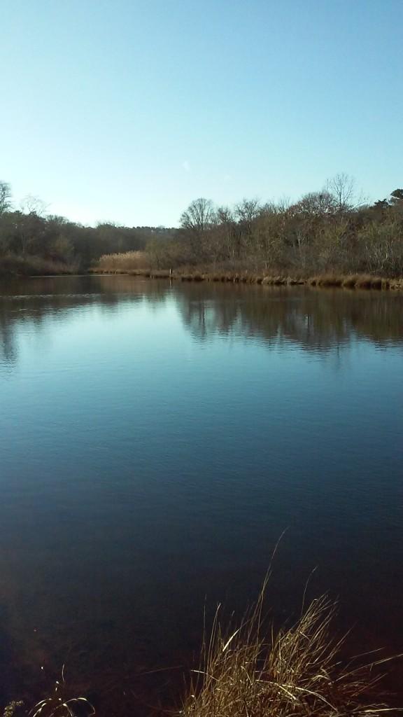 Creek December 26 2014